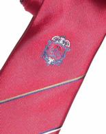 Zakázkový výroba kravaty vyšití loga - barevné